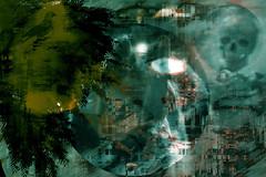 Noche de lobos (seguicollar) Tags: lobo luna esqueleto calavera pjaro noche virginiasegu imagencreativa photomanipulacin artedigital arte art artecreativo