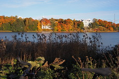 2016 Bike 180: Day 237, October 3 (olmofin) Tags: 2016bike180 finland helsinki tlnlahti sea polkupyr ruska fall autumn colors syksy lumix 20mm f17