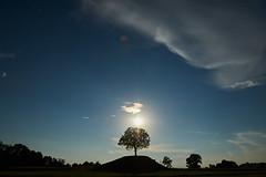 Villalta di Fagagna (paolo-p) Tags: alberi trees sole sun nuvole clouds fagagna villalta