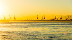DSC_3171-2 (sergeysemendyaev) Tags: 2016 rio riodejaneiro brazil water bay sun sunset landscape scenery       dusk   paradadosmuseus