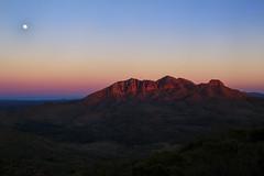 Mount Sonder during sunrise. (Mark Willemse) Tags: nature sunrise mount sonder mountain australia outback red morning landscape moon