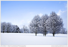 Winter Trees at Knaresborough ( Mark Sunderland www.marksunderland.com) Tags: landscape northyorkshire knaresborough winter cold snow snowscene snowscape scenic snowcovered trees bluesky britain britishisles england europe gb greatbritain northernengland travel uk unitedkingdom yorkshire ukengland