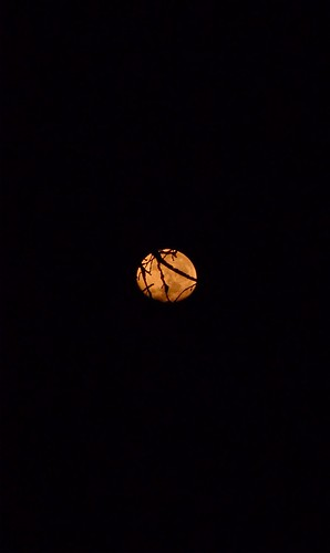 luna 6 (3)