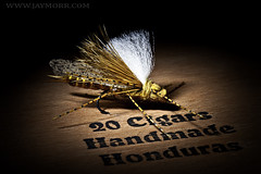 Hand Rolled - Fly Tyer Clint Goodman (JayMorr) Tags: flies cigars flytying handrolled d700 jaymorr handrolledhonduran
