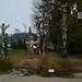 Totem Poles - Stanley Park