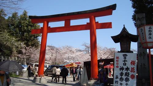 2011/04 平野神社 #01