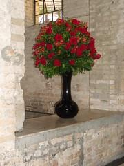 flores (Solo Verde Flores) Tags: cores vermelho nas arranjos abrasmoinho2010