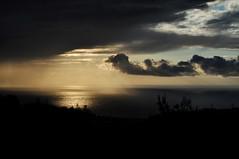 the view from my garden (Haifa) (miri orenstein) Tags: