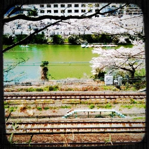 飯田橋外堀方面。