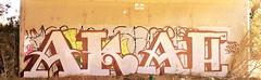 (Pastor Jim Jones) Tags: graffiti lcm akae