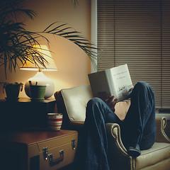 bookface (solecism) Tags: nerd reading book lamplight armchair bookworm davidfosterwallace offcameraflash asmallgift foradearfriend thepaleking