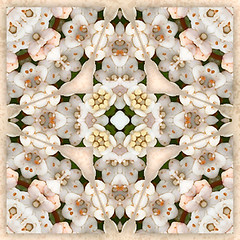 reflections on love 2 (SueO'Kieffe) Tags: nature kaleidoscope mandala spirituality