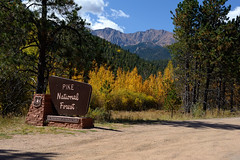 Diagnostic Pikes Peak National Forest (Fort Photo) Tags: autumn fall nature forest landscape nikon colorado peak national elpaso co pikes aspen pikespeak mountian usfs pikespeakhighway d700