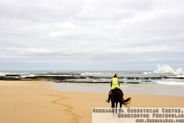 Gunnamatta Equestrian Centre, Mornington Peninsular-17