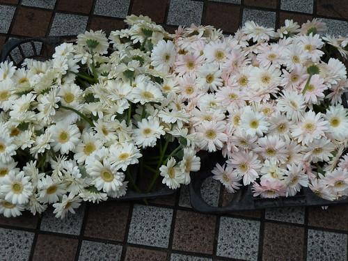 2011_flower_clock_3