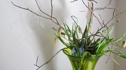 flowers from jill