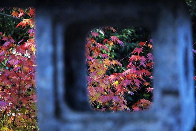 20101121_081635_吉野山_如意論寺