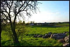 Landscape (Apple_Cheek) Tags: nature landscape view calmness