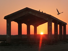 The Bird Has Flown (Alan1954) Tags: sunset holiday bird beautiful asia structure sur oman 2011 platinumheartaward
