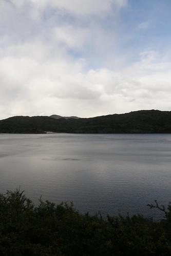 20100416039