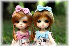 The Pumpkin Sisters (~sugarlump~) Tags: halloween yellow doll coco bjd lumi lati