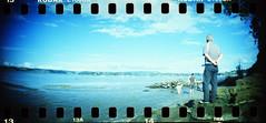 (chumq) Tags: newzealand film beach lomo xpro lomography crossprocessed kodak slide slidefilm holes nz sprockets cocklebay kodake100gx sprocketrocket