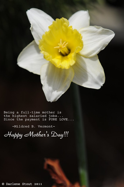 To all the best moms in the world...