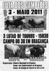 luta_de_touros