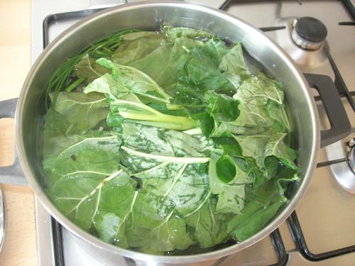 Rhabarberblätter Schnittlauch Tee gegen Läuse