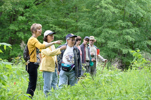 Pointing at a woodchuck [Mayapple Festival]