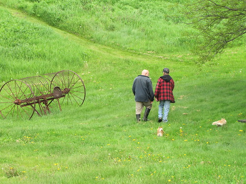 Tom and Ted in field
