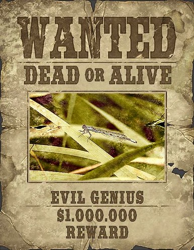 FX_Wanted_Poster