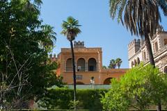 Real Alczar de Sevilla (Bazinga!) Tags: siviglia sevilla seville realalcazar alcazar jardines jardinesdelalcazar