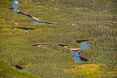 Banff (robertopastor) Tags: amrica canada canadianrockiesmountain canad fuji montaasrocosas robertopastor viaje xt1 xf100400 banff