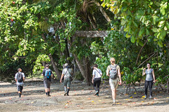 20160130-5C4A0450 (Take-it-easy59) Tags: 2016 30012016 corcovado corcovadoparquenacional costarica npcorcovado nature naturephotography tropicalrainforest tropischregenwoud winter