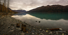 Stumped (Traylor Photography) Tags: clouds autumn snow morning sunrise distance anchorage eklutnalake glacial mountains colors reflectioni panorama fall drinkingwater rocks