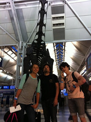 The dinosaur layover. (JulianBleecker) Tags: julianbleecker lizziearmanto mikeeofriel people skateboarder skateboarding sport sk8 iso unknownflash