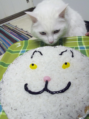 Nilla Cake 0194