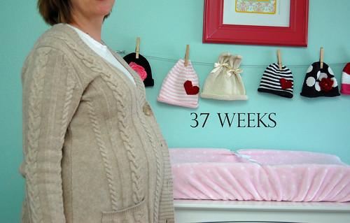 37 weeks 02