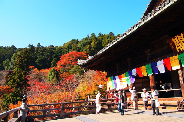 20101119_112430_長谷寺_礼堂(国宝)