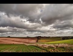 Plains (K_D_B 2 Million views. Thanks) Tags: cloud field canon fence landscape hedge crops wiltshire cloudscape 30d kdb fineartphotos sigma1770f28dcosmacro salisburyplauns