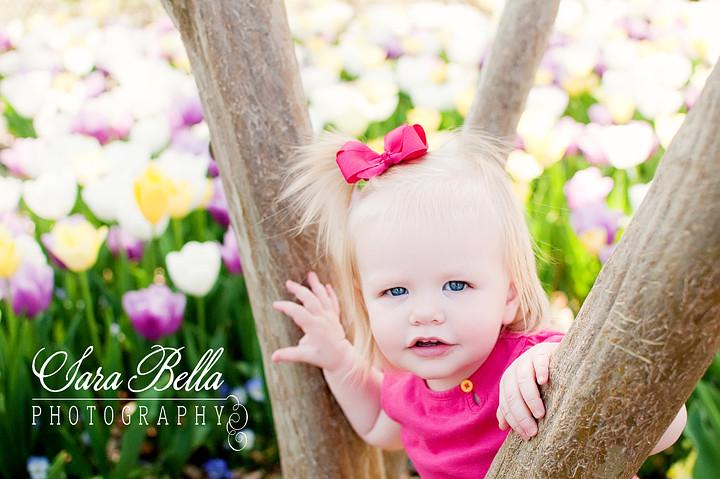 3-17-2011 Charlotte Tulips (18) copyweb
