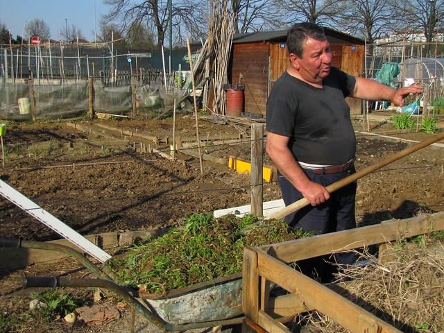 compostiere agli orti regolamentati 26
