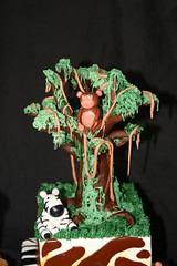 "Chocolate tree • <a style=""font-size:0.8em;"" href=""http://www.flickr.com/photos/60584691@N02/5585714543/"" target=""_blank"">View on Flickr</a>"