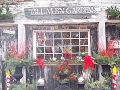 Blumen Gardens in the Winter