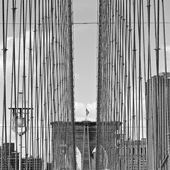 I Can See Through The Lines (Daren Criswell Photography) Tags: pictures newyorkcity bridge newyork art architecture brooklyn canon rebel photos hipster architectural lsd announcement photographs empire brooklynbridge phish empirestatebuilding empirestate canonrebel taste psychedelic artmuseum emerald photoart emeraldcity watkinsglen t3i artexhibit yellowbrickroad phishtour canoncamera watkinsglenn newyorkstateofmind phishfestival theeastvillage loseface phishsummertour rebelt3i canonrebelt3i darencriswell criswelldaren lsdnews superball9 phishsuperballix superballix phishmusic phishtour2011 phishfestivalannouncement phishphish bydarencriswell