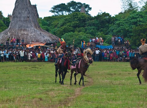Pasola, horse fighting festival