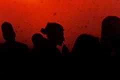 drinking girl's silhouette (Winfried Veil) Tags: leica red party berlin rot girl silhouette bar night germany deutschland 50mm drink drinking straw rangefinder cocktail nightlife trinken mitte summilux asph mdchen kneipe lining m9 berlinmitte nachtleben strohhalm 2011 schattenriss trinkend messsucher mobilew auguststrase tucholskystrase leicam9 winfriedveil