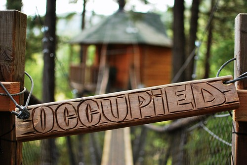 treehouse occupied