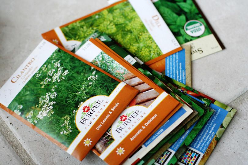 Planting Seeds 2011 - Seeds
